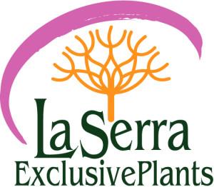 LaSerra_logo